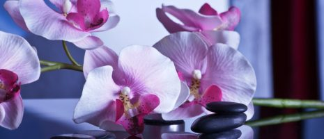 massage-599505_1920